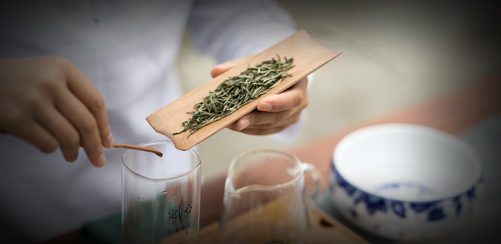 高端绿茶代表